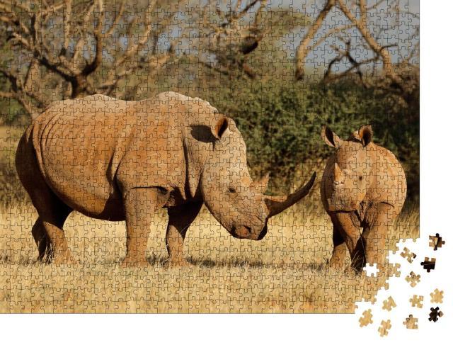 """Puzzle 1000 Teile """"Breitmaulnashorn mit Kalb in Südafrika"""""""