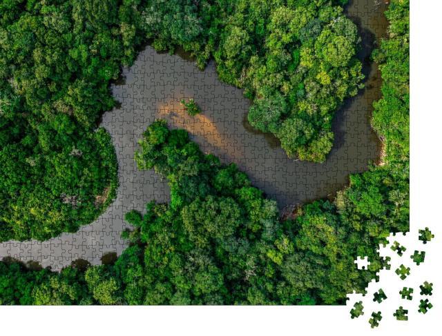 """Puzzle 1000 Teile """"Dschungel, von einem breiten Fluss durchzogen"""""""
