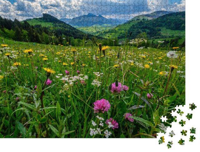 """Puzzle 1000 Teile """"Eine Wiese voller schöner Bergblumen vor dem Hintergrund der Mala Fatra"""""""