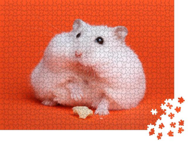 """Puzzle 1000 Teile """"Fluffiger weißer Hamster """""""