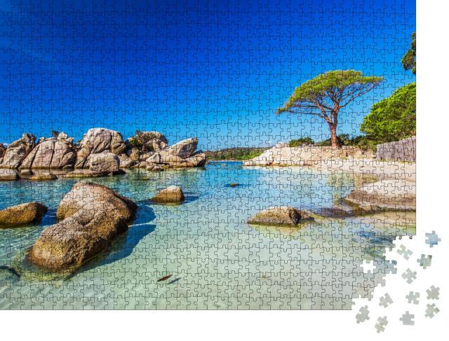 """Puzzle 1000 Teile """"Pinie am Strand von Palombaggia im Süden Korsikas"""""""