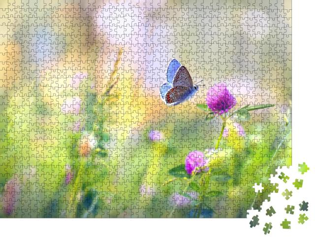 """Puzzle 1000 Teile """"Wilde Blumen: eine Wiese mit Klee und Schmetterling"""""""