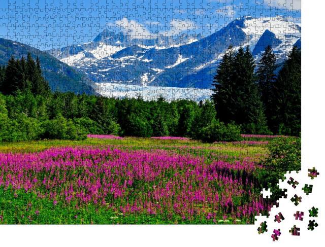 """Puzzle 1000 Teile """"Mendenhall-Gletscher mit blühendem Feuerkraut, Alaska"""""""