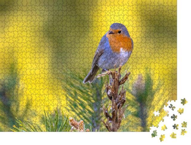 """Puzzle 1000 Teile """"Hübsches Rotkehlchen auf einem grünen Zweig"""""""