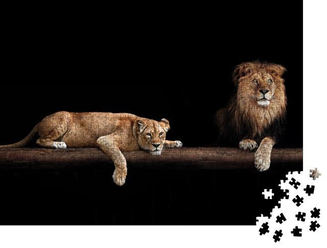 """Puzzle 1000 Teile """"Löwe und Löwin"""""""
