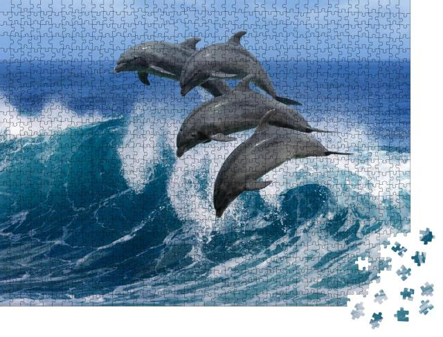 """Puzzle 1000 Teile """"Vier schöne Delphine springen über brechende Wellen, Hawaii """""""