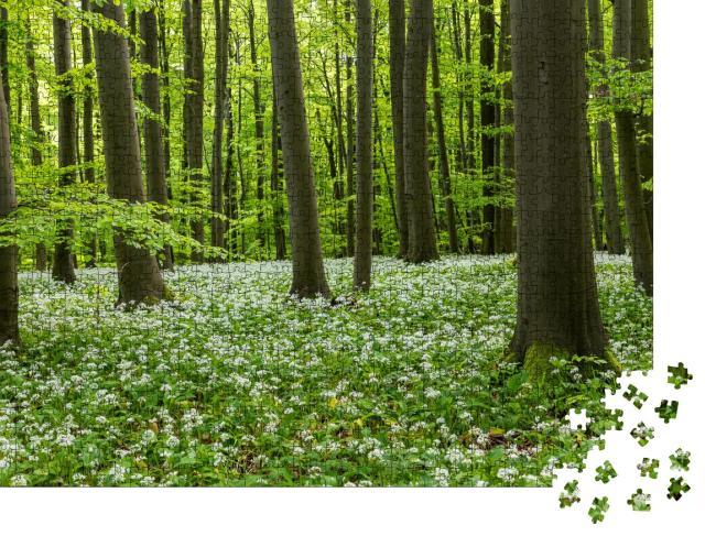 """Puzzle 1000 Teile """"Wunderschöne Bärlauchblüte im Nationalpark Hainich, Thüringen"""""""