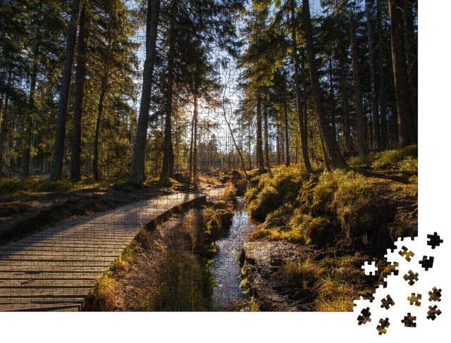 """Puzzle 1000 Teile """"Herbstwald am Brocken im Harz"""""""