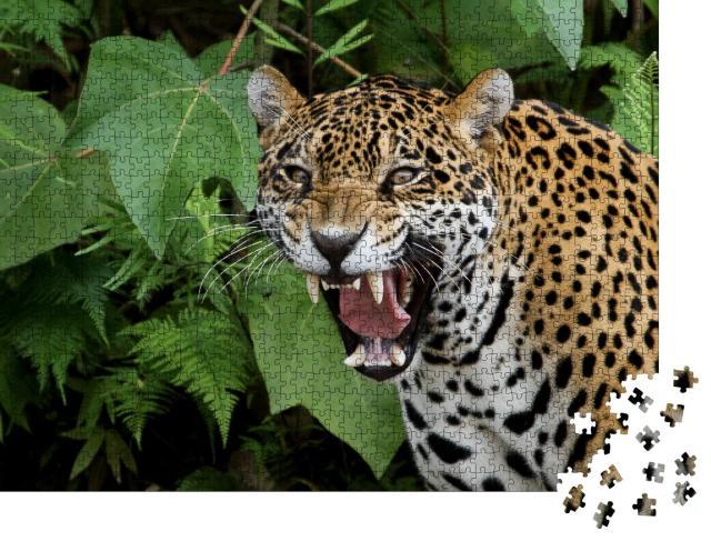"""Puzzle 1000 Teile """"Jaguar im Amazonaswald"""""""