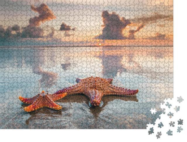 """Puzzle 1000 Teile """"Zwei Seesterne am Strand von Bali"""""""