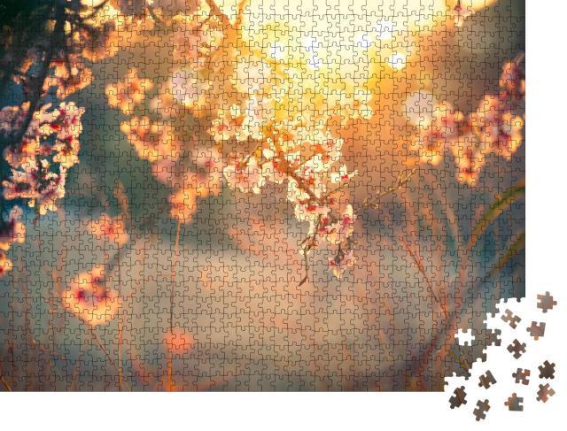 """Puzzle 1000 Teile """"Sanftes Sonnenlicht über den Blüten im Obstgarten"""""""