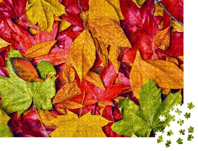 """Puzzle 1000 Teile """"Hintergrund von Herbstblättern"""""""