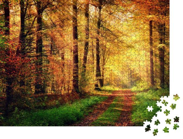 """Puzzle 1000 Teile """"Herbstliche Waldlandschaft mit warmen Lichtstrahlen und einem Fußweg"""""""