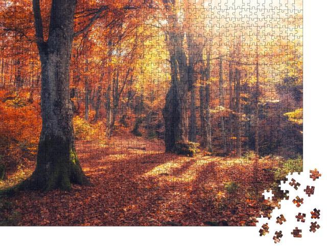 """Puzzle 1000 Teile """"Herbstlicher Wald: Herbstmorgen im bunten Wald mit Sonnenstrahlen"""""""